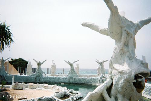 サンゴ畑写真03